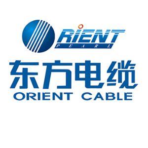 宁波东方电缆股份有限公司