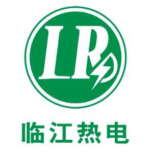 杭州临江环保热电有限公司