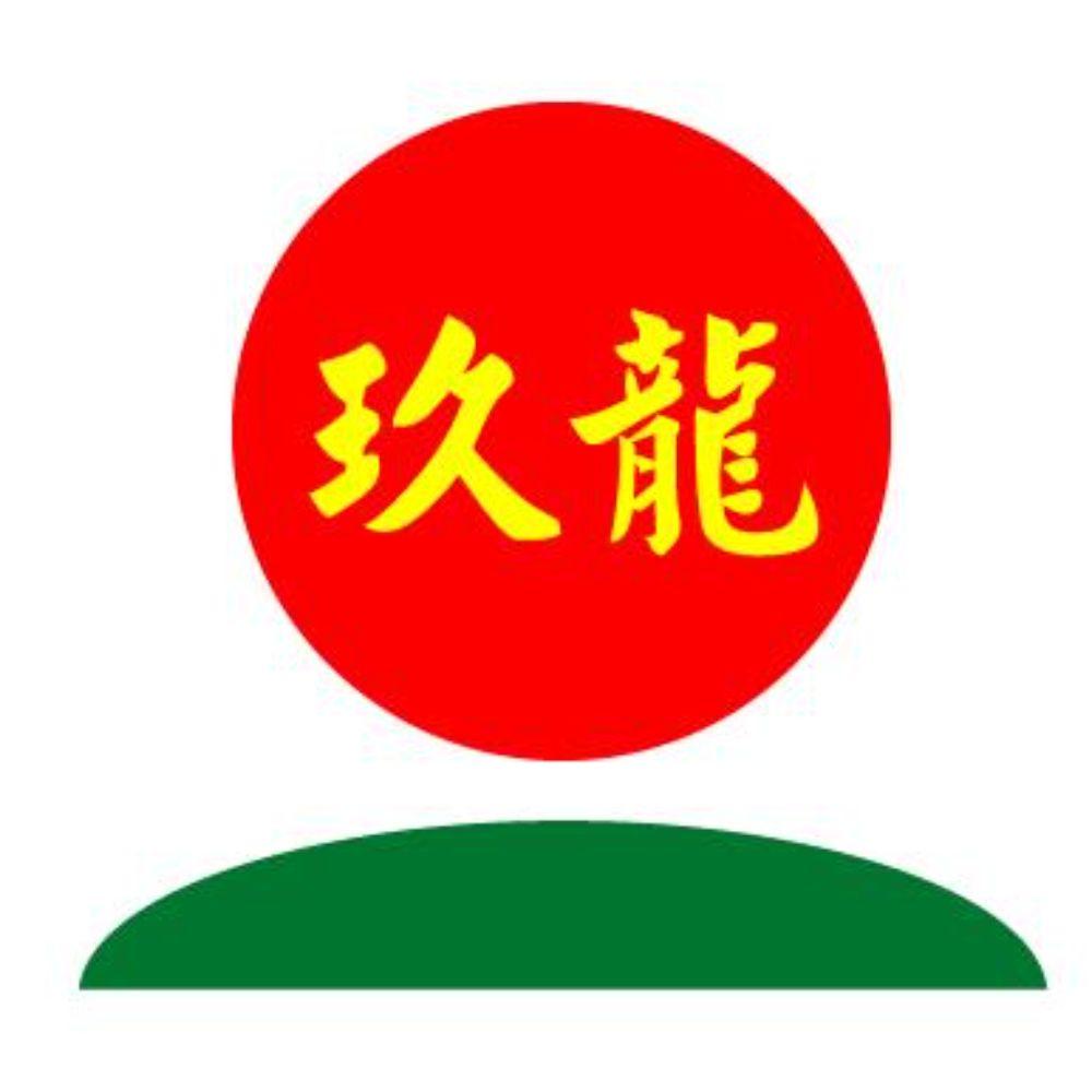 玖龙纸业(湖北)有限公司