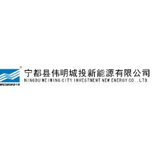 宁都县伟明城投新能源有限公司
