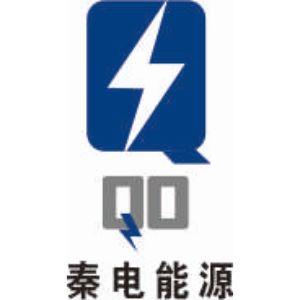 陕西秦电能源科技集团股份有限公司