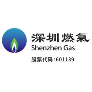 东莞深燃天然气热电有限公司