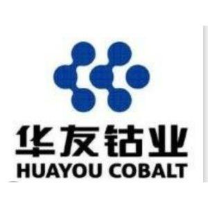 广西华友工程项目管理有限公司