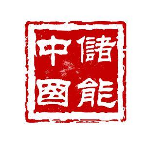 中储国能(北京)技术有限公司