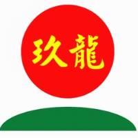 玖龙纸业(乐山)有限公司