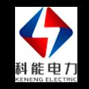 广东科能电力发展有限公司
