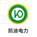 武汉凯迪电力环保有限公司