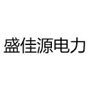 盛佳源(天津)电力工程安装有限公司
