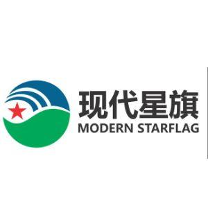 大安市现代星旗生物质发电有限公司
