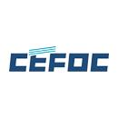 中国电子系统工程第四建设有限公司