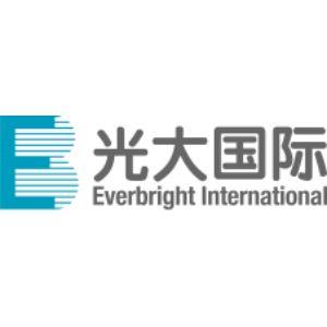 新泰光大环保能源有限公司