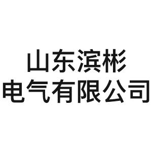 山东滨彬电气有限公司