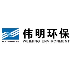 龙泉伟明环保能源有限公司