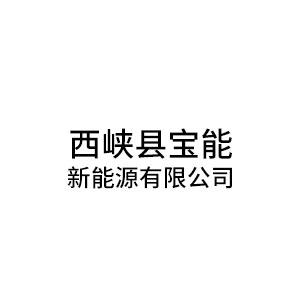西峡县宝能新能源有限公司