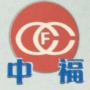 福建省中福工程建设监理有限公司