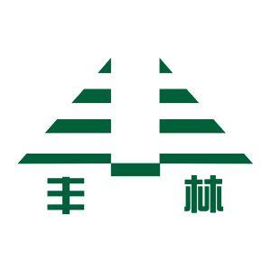 安徽丰林建设工程有限公司