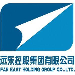 远东控股集团有限公司