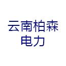 云南柏森电力设计有限公司