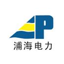 上海浦海求实电力新技术股份有限公司