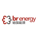铂瑞能源环境工程有限公司