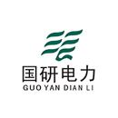 山东国研电力股份有限公司