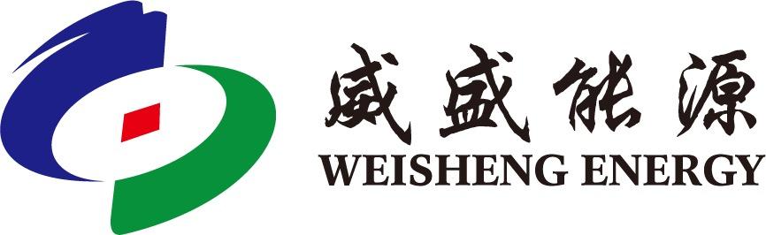 上海龙投威盛能源科技有限公司