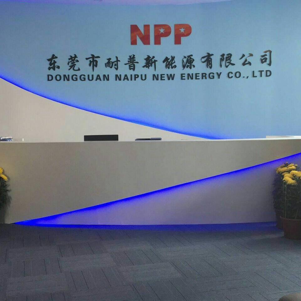 东莞市耐普新能源有限公司