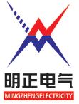明正集团有限公司