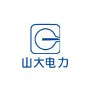山东山大电力技术股份有限公司