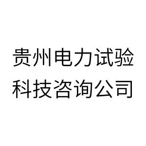 贵州电力试验科技咨询公司