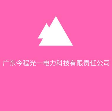广东今程光一电力科技有限责任公司