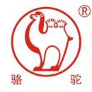 骆驼集团武汉新能源科技有限公司